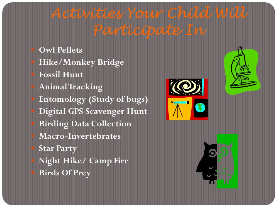 Activities Your Child Will Participate In Owl Pellets Hike/Monkey Bridge Fossil Hunt Animal Tracking Entomology (Study of bugs) Digital GPS Scavenger Hunt Birding Data Collection Macro-Invertebrates Star Party Night Hike/ Camp Fire Birds Of Prey
