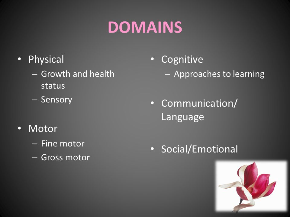 DOMAINS Physical – Growth and health status – Sensory Motor – Fine motor – Gross motor Cognitive – Approaches to learning Communication/ Language Soci