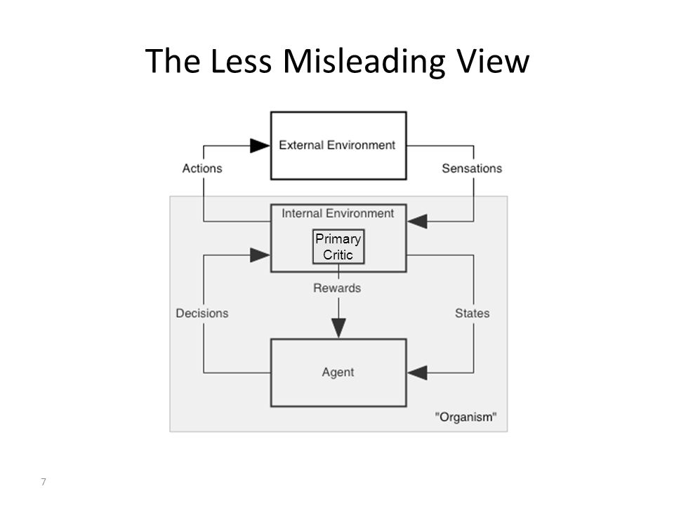 7 The Less Misleading View Primary Critic