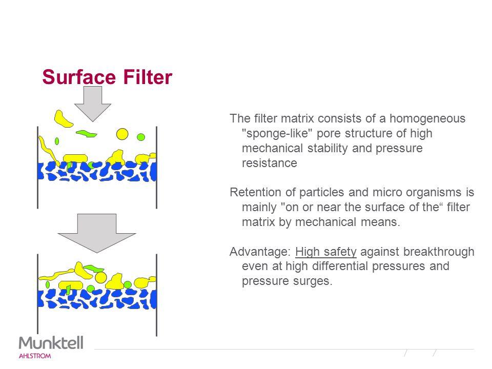 Surface Filter Structure Cellulose Acetate - Polycarbonate