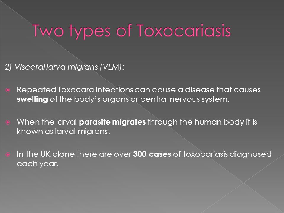2) Visceral larva migrans (VLM):  Repeated Toxocara infections can cause a disease that causes swelling of the body's organs or central nervous syste