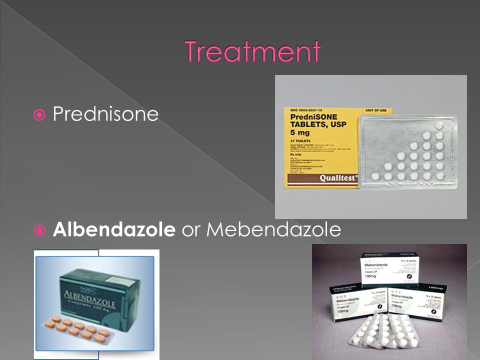  Prednisone  Albendazole or Mebendazole