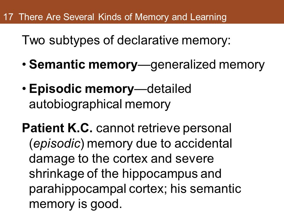 17 There Are Several Kinds of Memory and Learning Two subtypes of declarative memory: Semantic memory—generalized memory Episodic memory—detailed autobiographical memory Patient K.C.