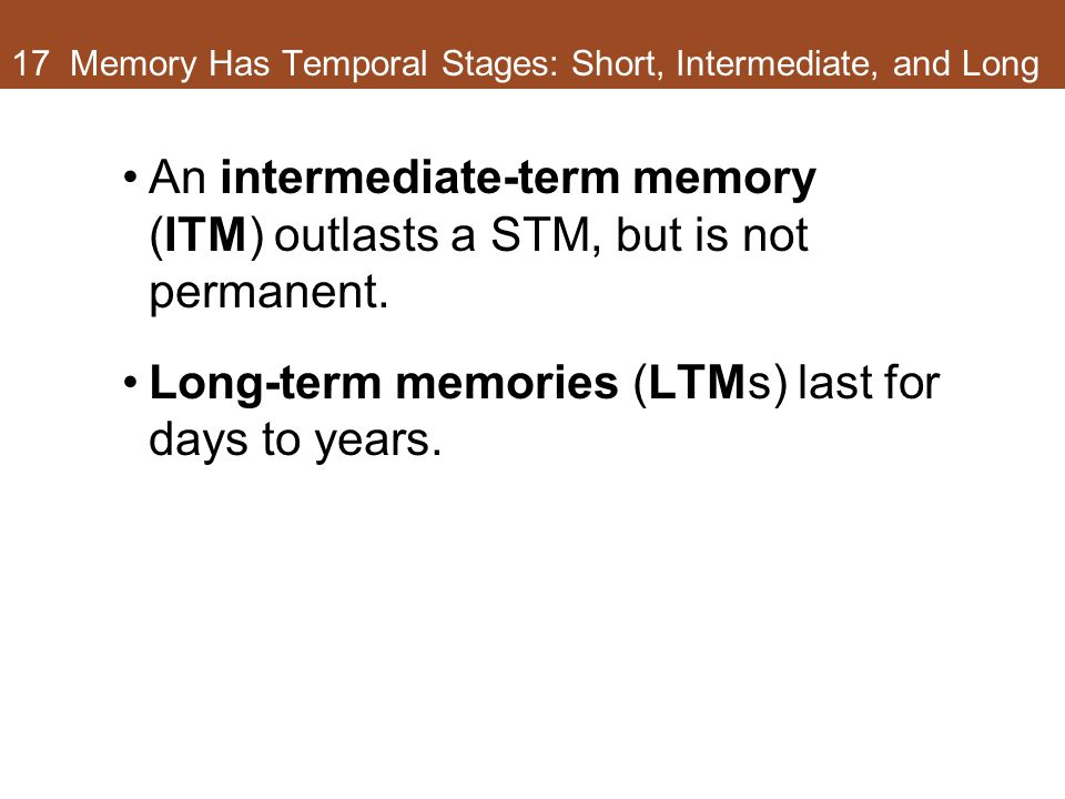 17 Memory Has Temporal Stages: Short, Intermediate, and Long An intermediate-term memory (ITM) outlasts a STM, but is not permanent. Long-term memorie