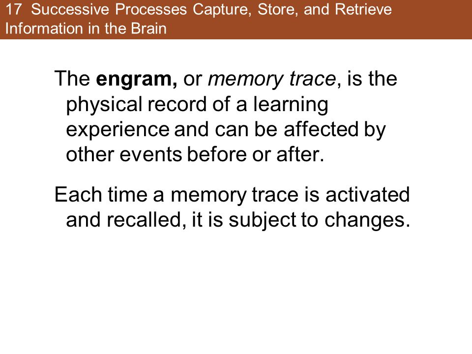 17 Successive Processes Capture, Store, and Retrieve Information in the Brain The engram, or memory trace, is the physical record of a learning experi