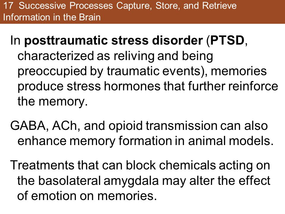 17 Successive Processes Capture, Store, and Retrieve Information in the Brain In posttraumatic stress disorder (PTSD, characterized as reliving and being preoccupied by traumatic events), memories produce stress hormones that further reinforce the memory.