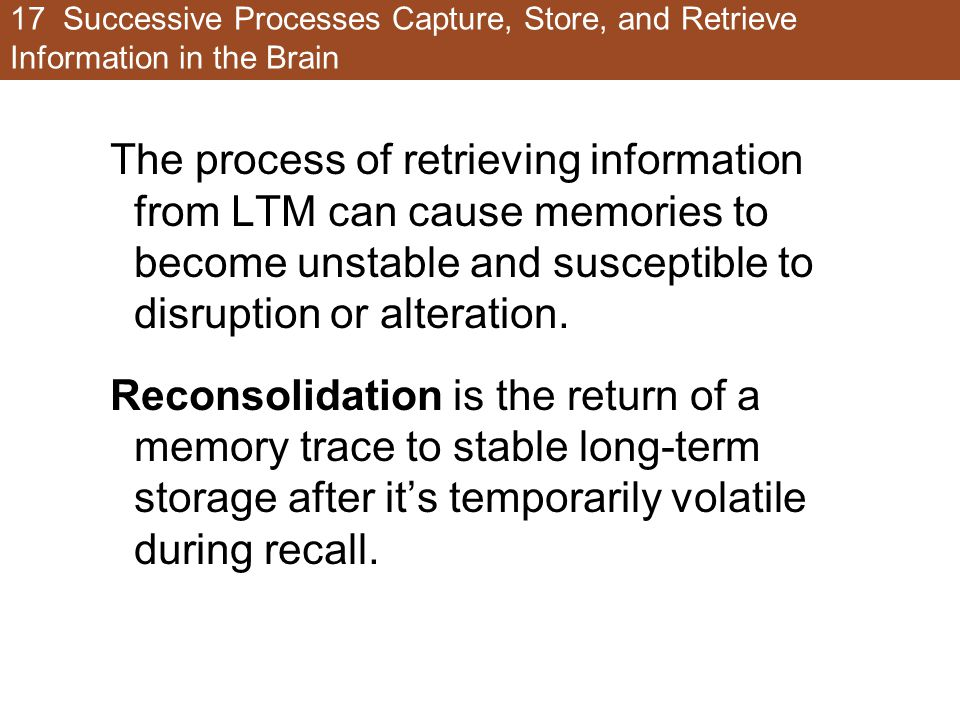 17 Successive Processes Capture, Store, and Retrieve Information in the Brain The process of retrieving information from LTM can cause memories to bec