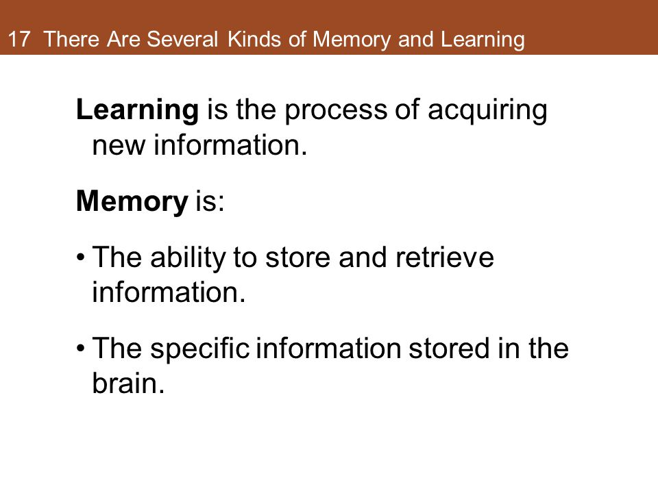 17 There Are Several Kinds of Memory and Learning Learning is the process of acquiring new information. Memory is: The ability to store and retrieve i