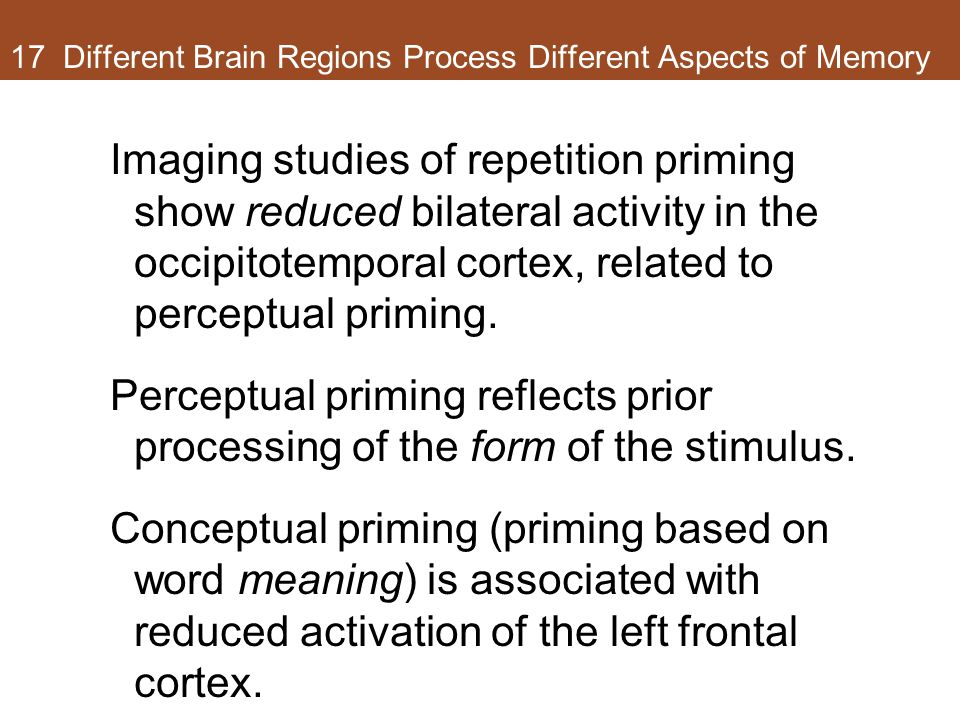 17 Different Brain Regions Process Different Aspects of Memory Imaging studies of repetition priming show reduced bilateral activity in the occipitote