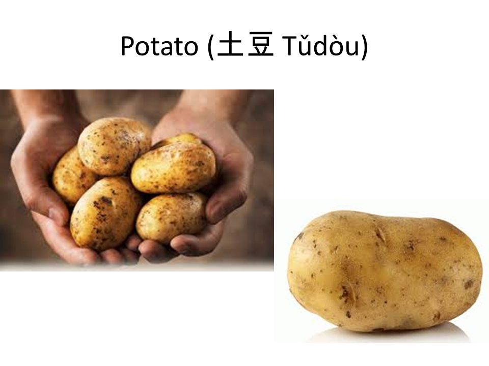 Potato ( 土豆 Tǔdòu)