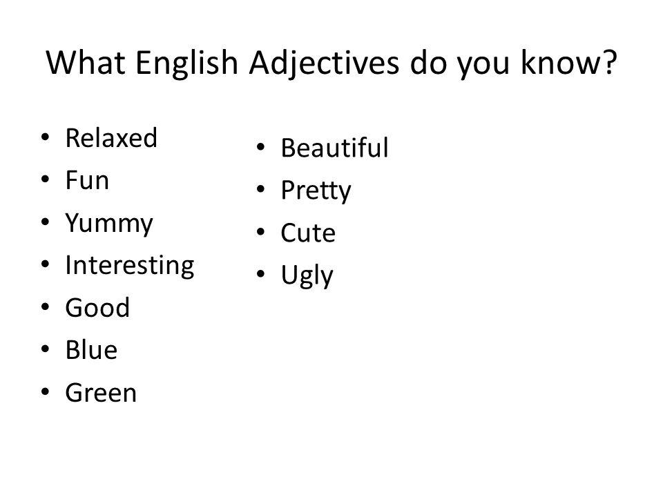 New Adjectives! Slimy Sticky Fuzzy Stinky