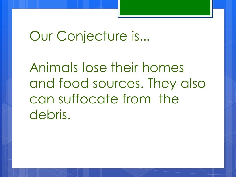 Our Conjecture is... Animals lose their homes and food sources.