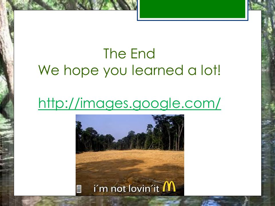 The End We hope you learned a lot! http://images.google.com/ http://images.google.com/