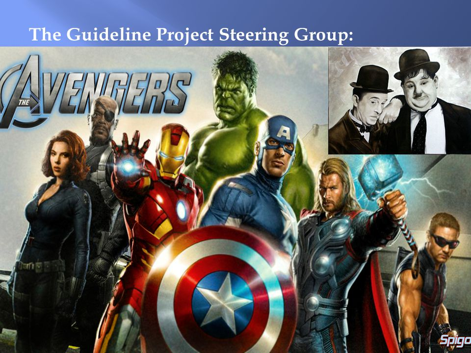 The Guideline Project Steering Group: