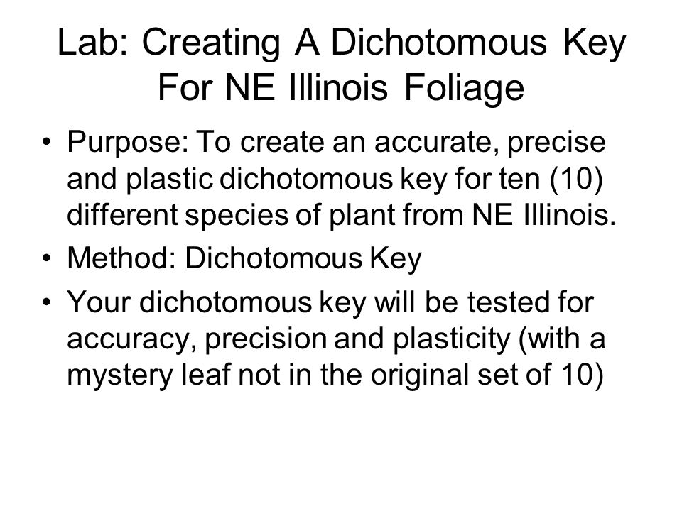 Lab: Creating A Dichotomous Key For NE Illinois Foliage Purpose: To create an accurate, precise and plastic dichotomous key for ten (10) different spe