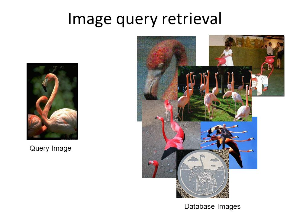 Image query retrieval Query Image Database Images