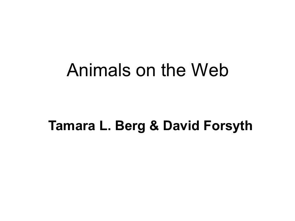 Animals on the Web Tamara L. Berg & David Forsyth