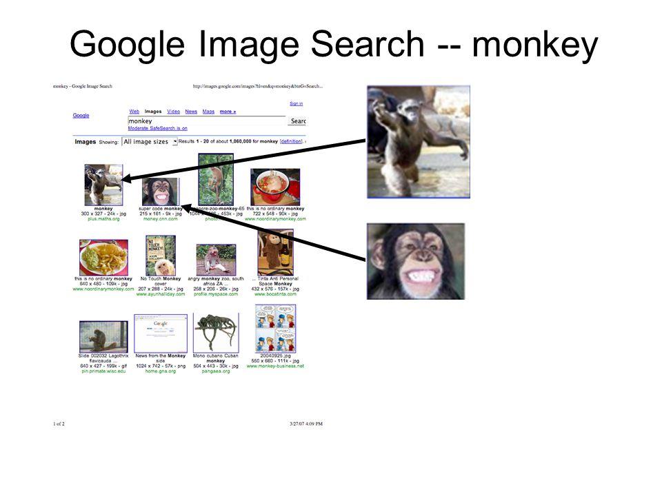 Google Image Search -- monkey