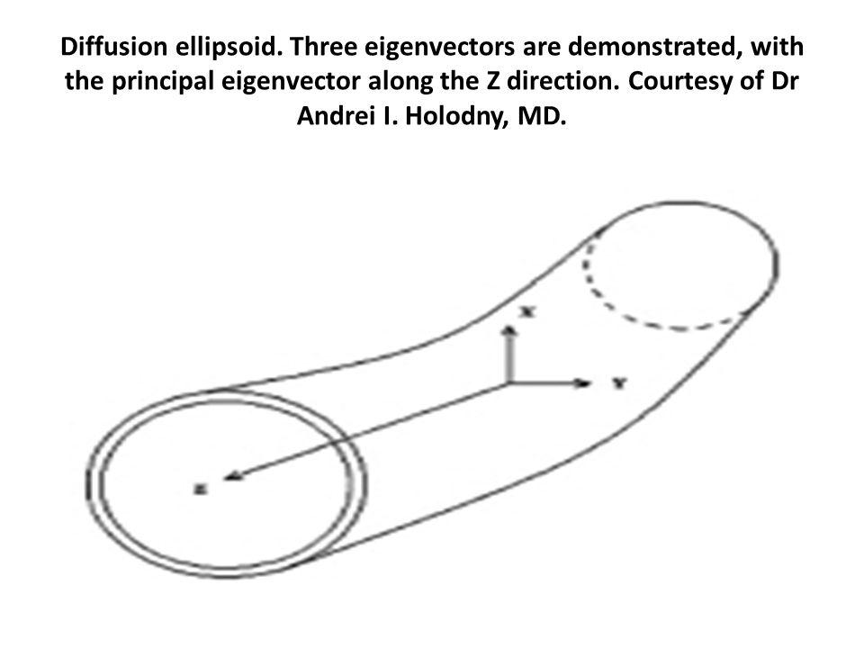 Diffusion ellipsoid.