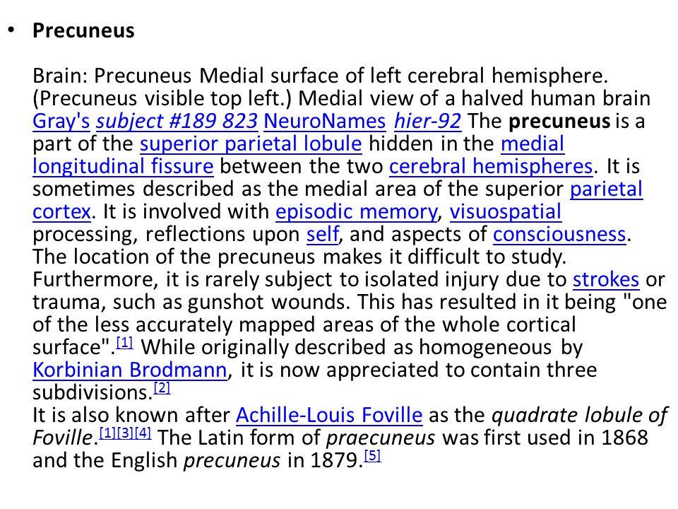 Precuneus Brain: Precuneus Medial surface of left cerebral hemisphere.