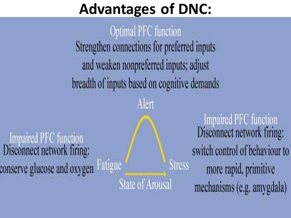 Advantages of DNC: