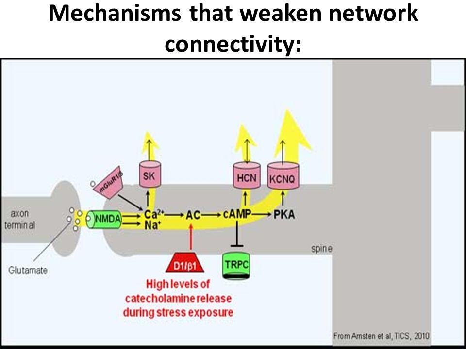 Mechanisms that weaken network connectivity: