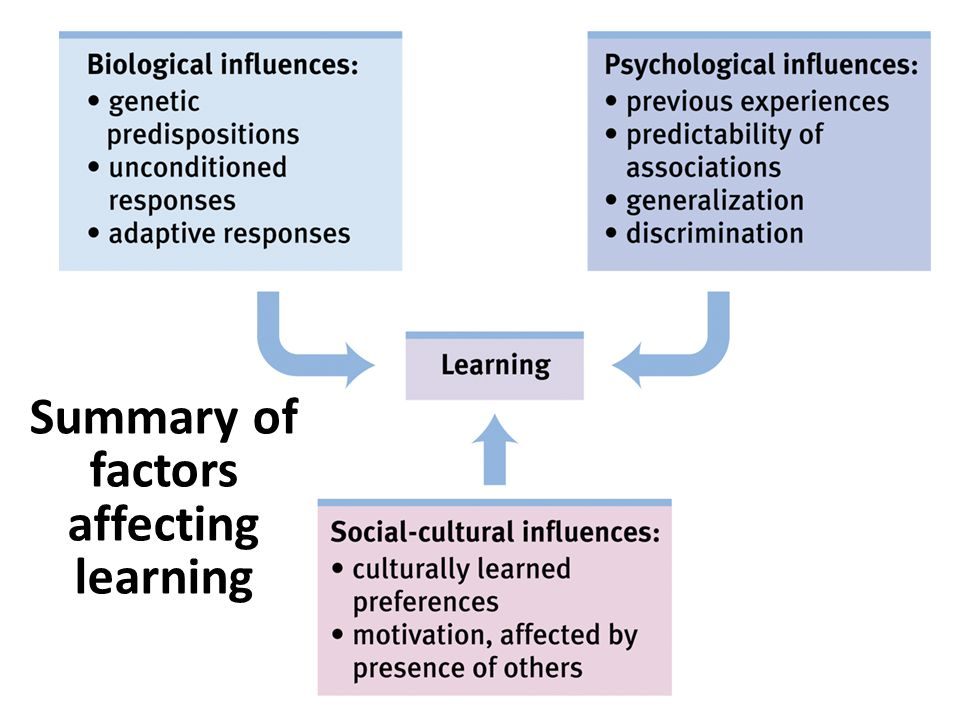Summary of factors affecting learning