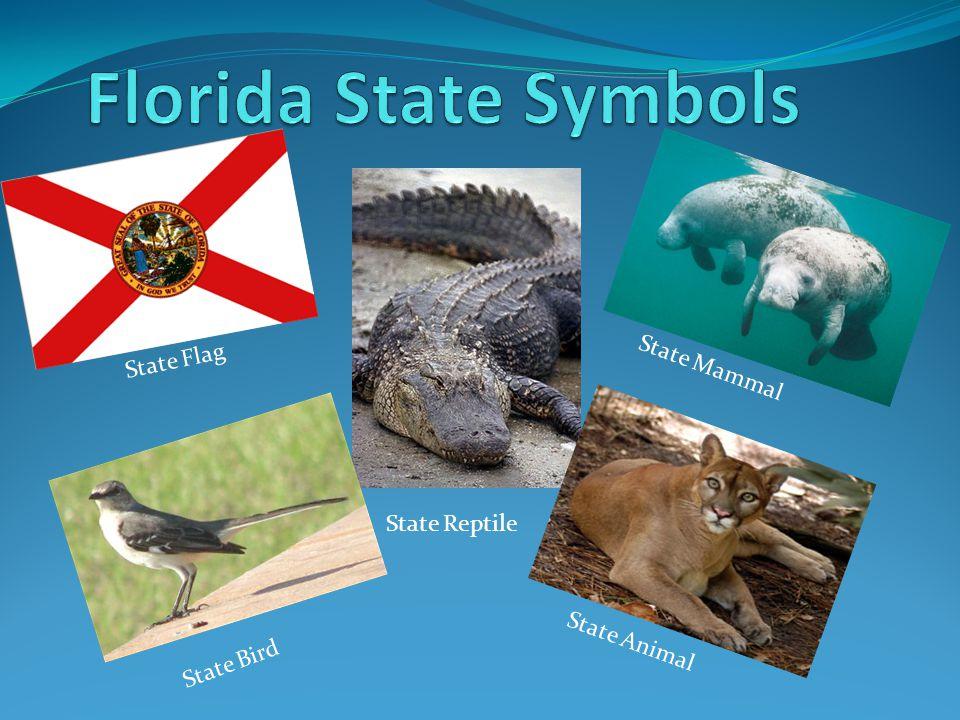 State Flag State Bird State Mammal State Animal State Reptile