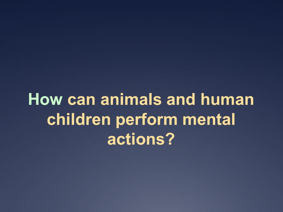 How can animals and human children perform mental actions
