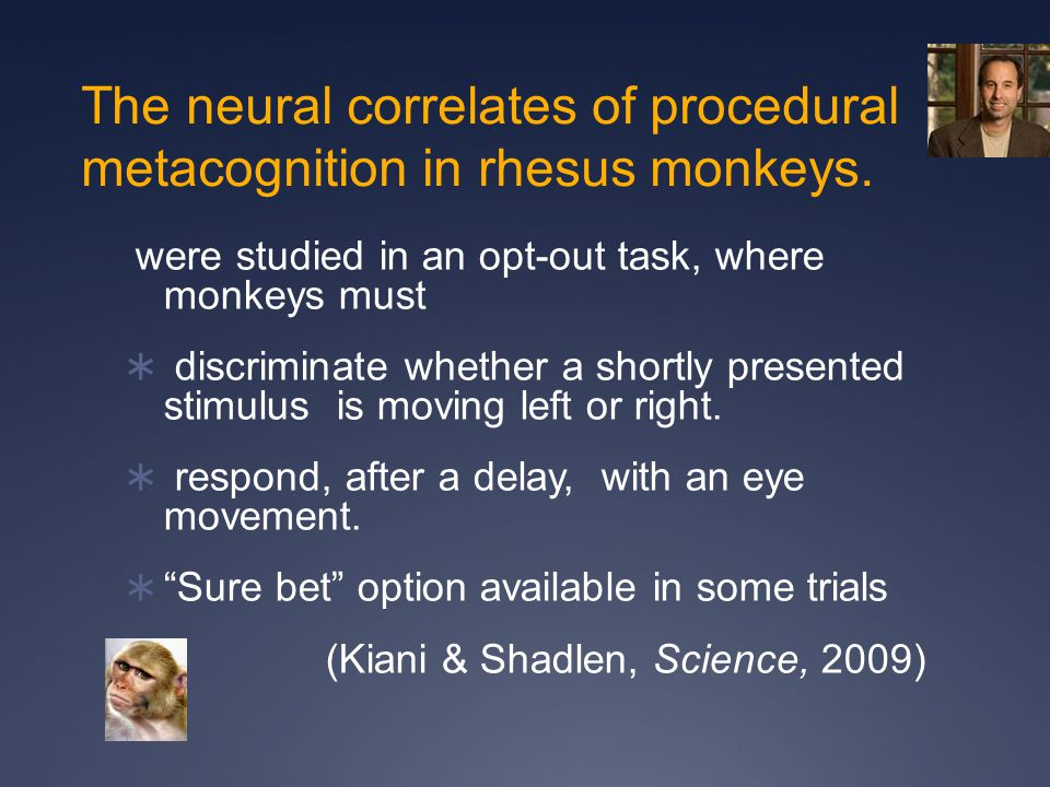 The neural correlates of procedural metacognition in rhesus monkeys.