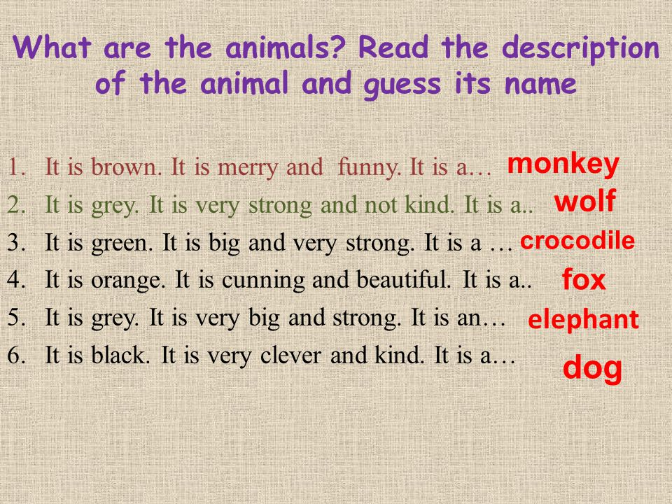 What are the animals? Read the description of the animal and guess its name 1.It is brown. It is merry and funny. It is a… 2.It is grey. It is very st