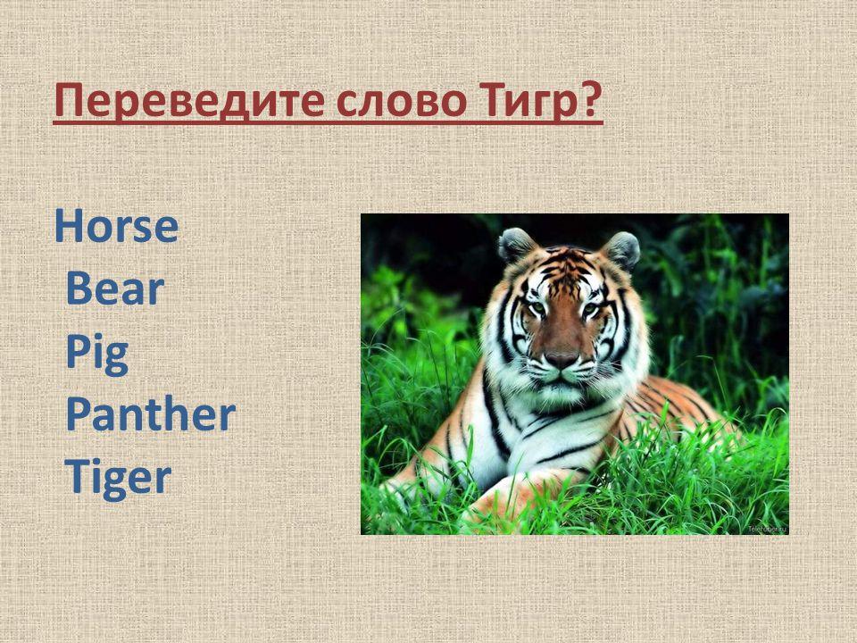 Переведите слово Тигр? Horse Bear Pig Panther Tiger