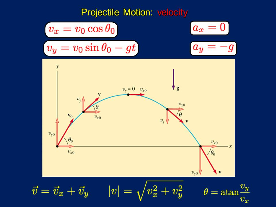 Projectile Motion: velocity