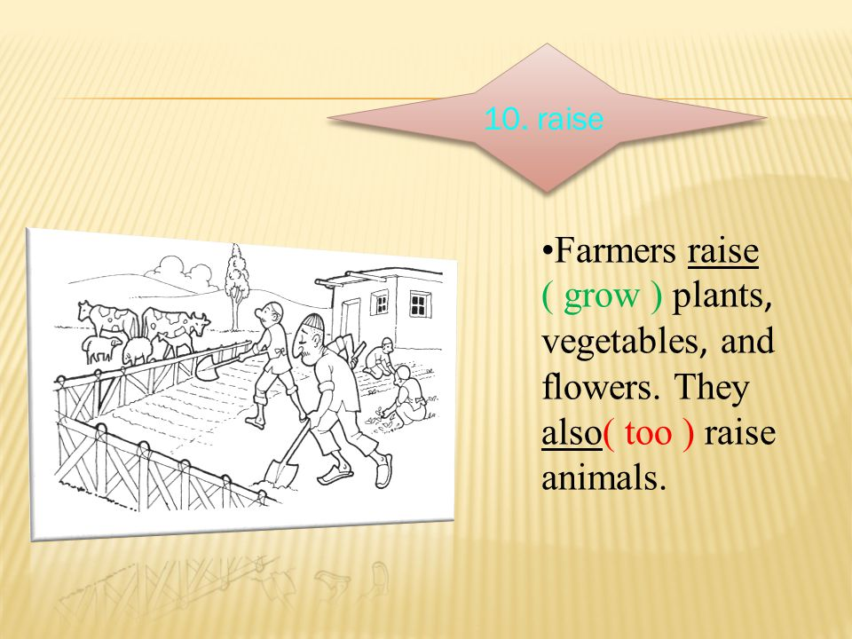 10. raise Farmers raise ( grow ) plants ' vegetables ' and flowers. They also( too ) raise animals.