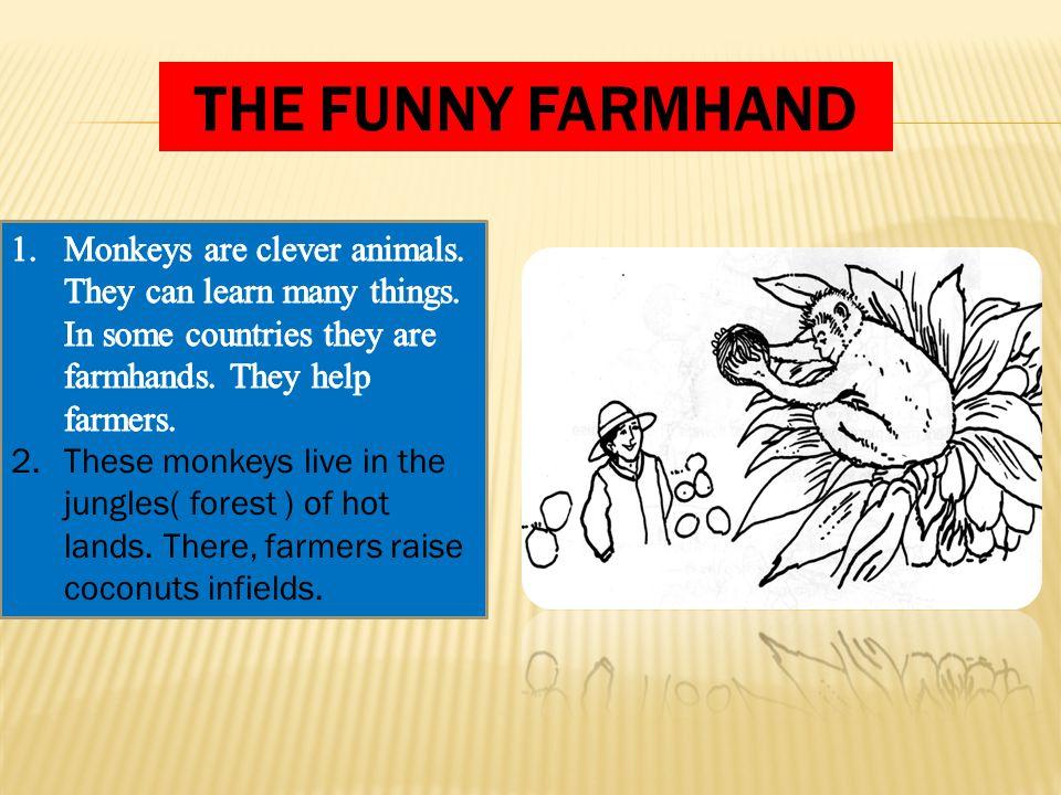 THE FUNNY FARMHAND