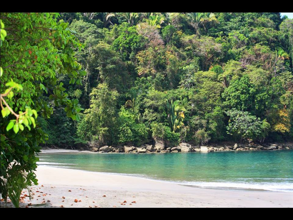 The Manuel Antonio National Park, where the steep jungle hills meet the (Pacific) ocean.