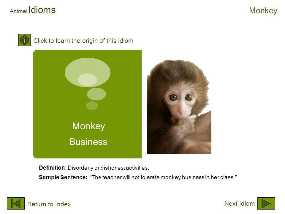 "Monkey Business Animal Idioms Definition: Disorderly or dishonest activities. Sample Sentence: ""The teacher will not tolerate monkey business in her c"
