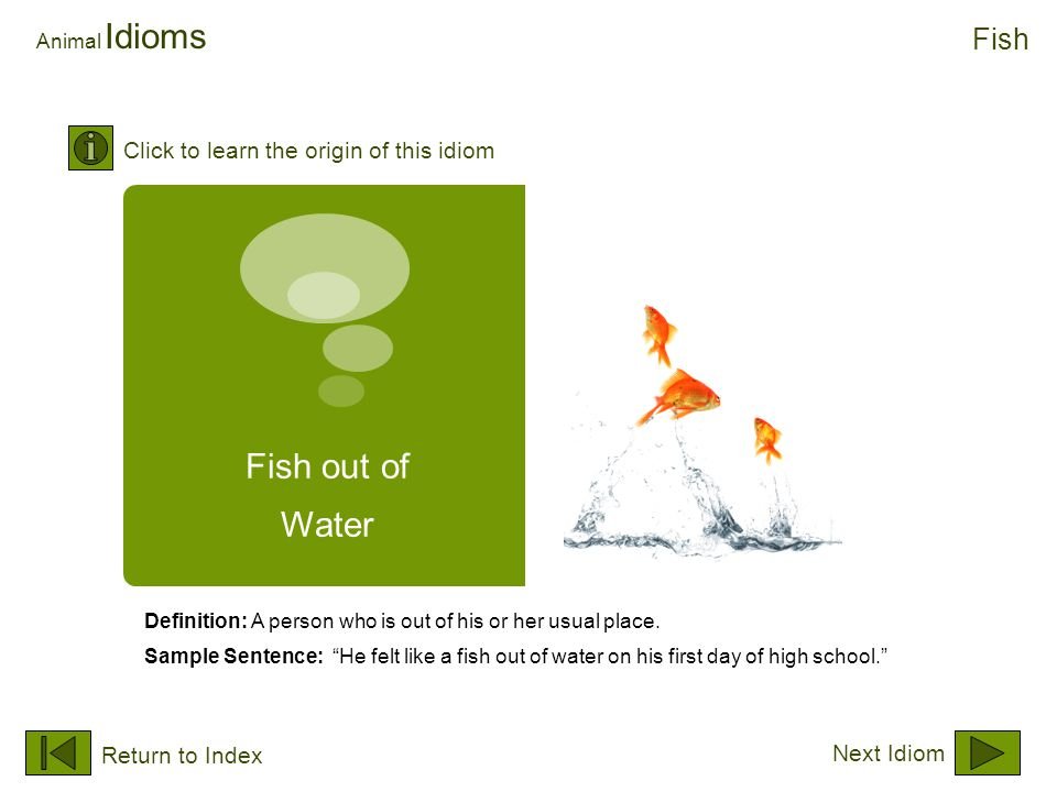 "Fish out of Water Animal Idioms Definition: A person who is out of his or her usual place. Sample Sentence: ""He felt like a fish out of water on his f"