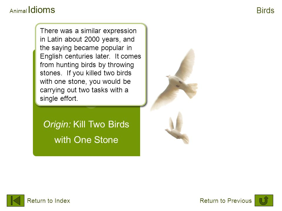 Origin: Kill Two Birds with One Stone Animal Idioms Birds Return to IndexReturn to Previous There was a similar expression in Latin about 2000 years,