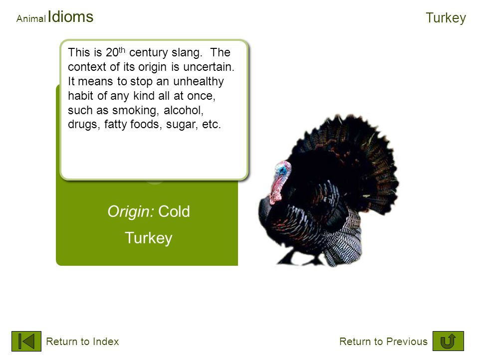 Origin: Cold Turkey Animal Idioms Turkey Return to IndexReturn to Previous This is 20 th century slang. The context of its origin is uncertain. It mea