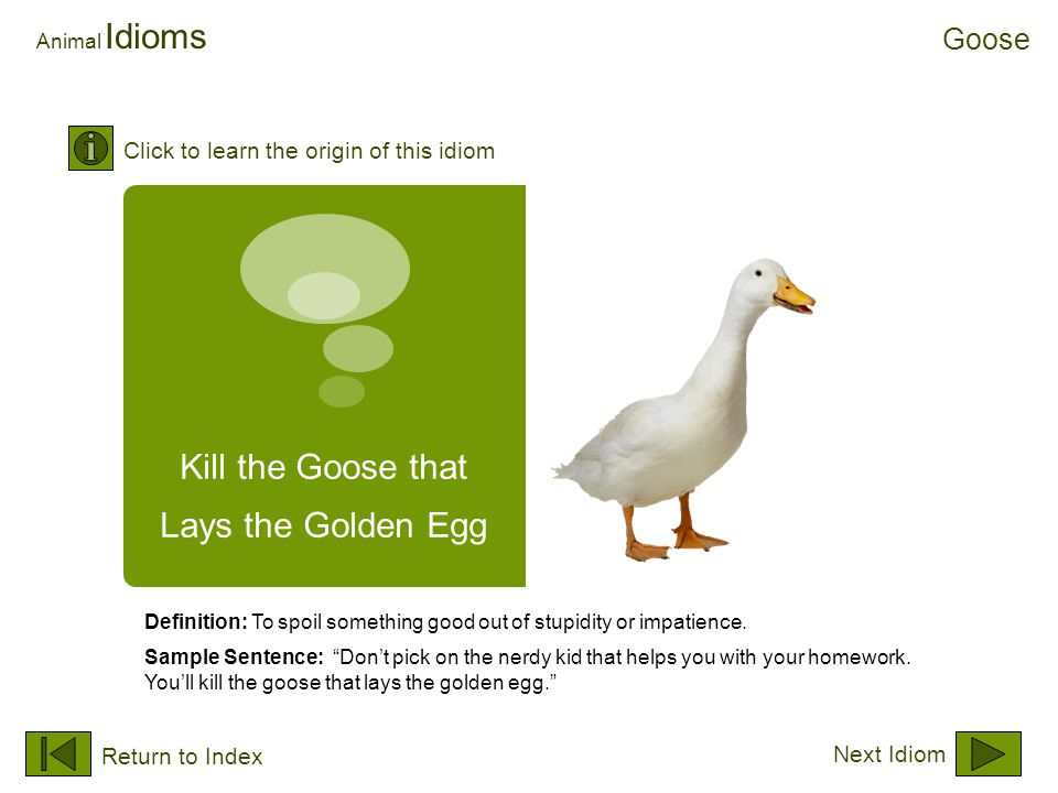 "Kill the Goose that Lays the Golden Egg Animal Idioms Definition: To spoil something good out of stupidity or impatience. Sample Sentence: ""Don't pick"