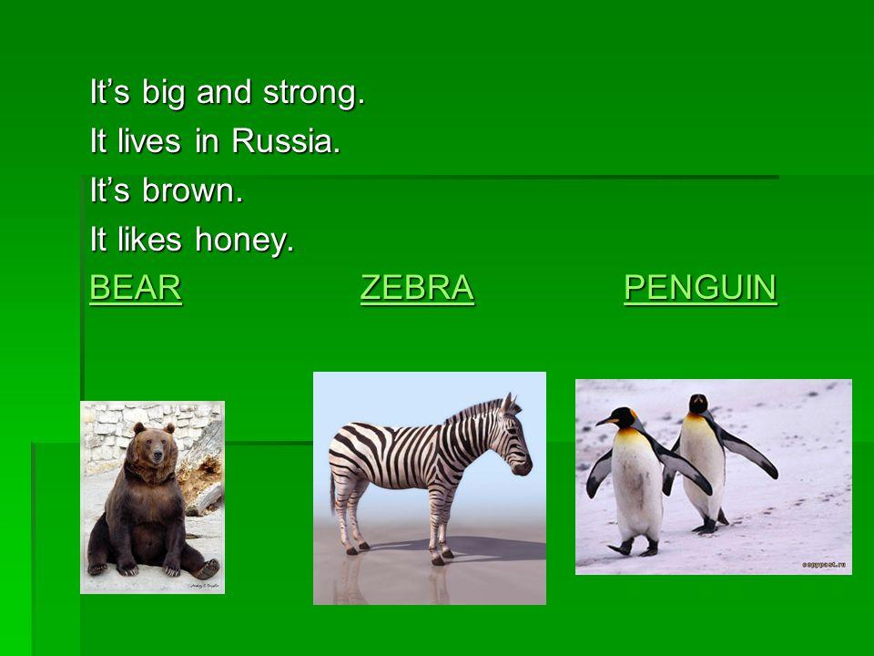 It' a big cat.It hunts small animals. Is has got black and orange stripes.