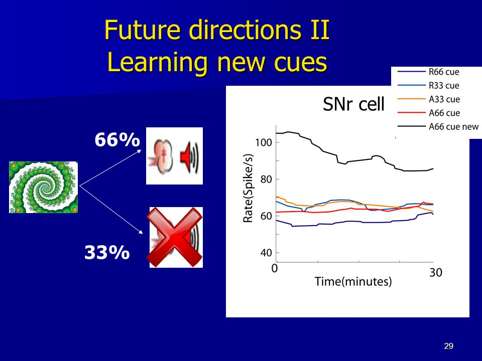 29 Future directions II Learning new cues 66% 33% SNr cell