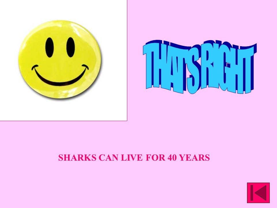 SHARKS CAN LIVE FOR 40 YEARS