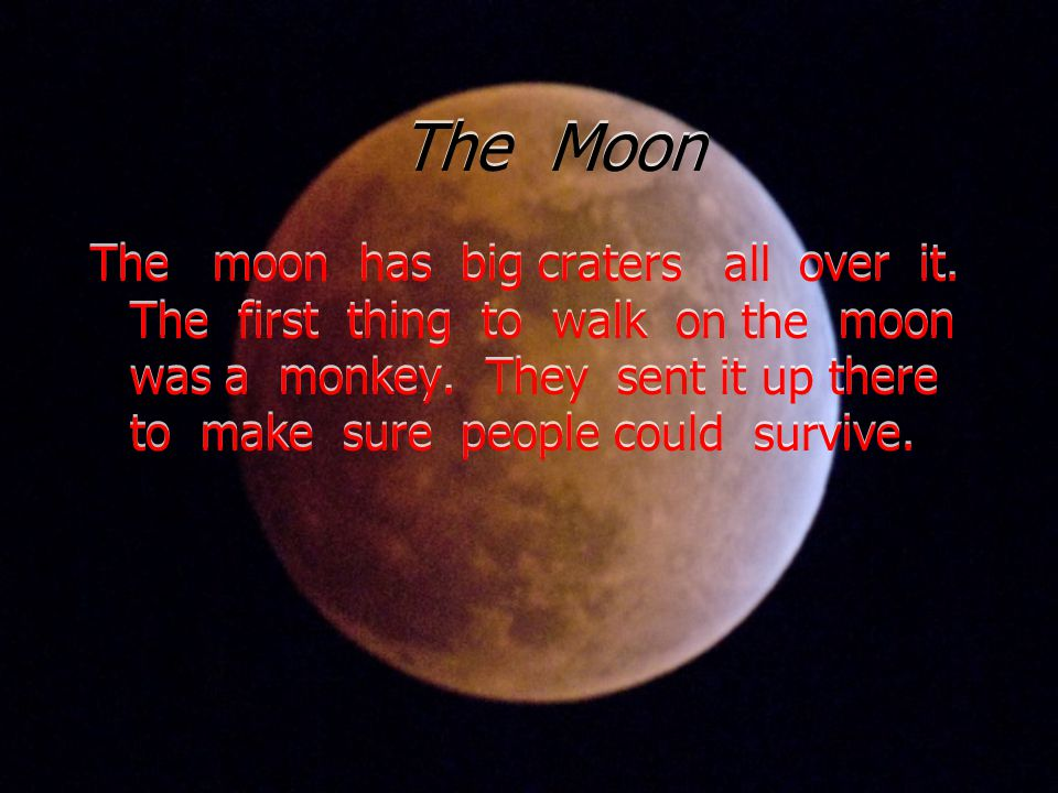 The Moon The moon has big craters all over it.The first thing to walk on the moon was a monkey.