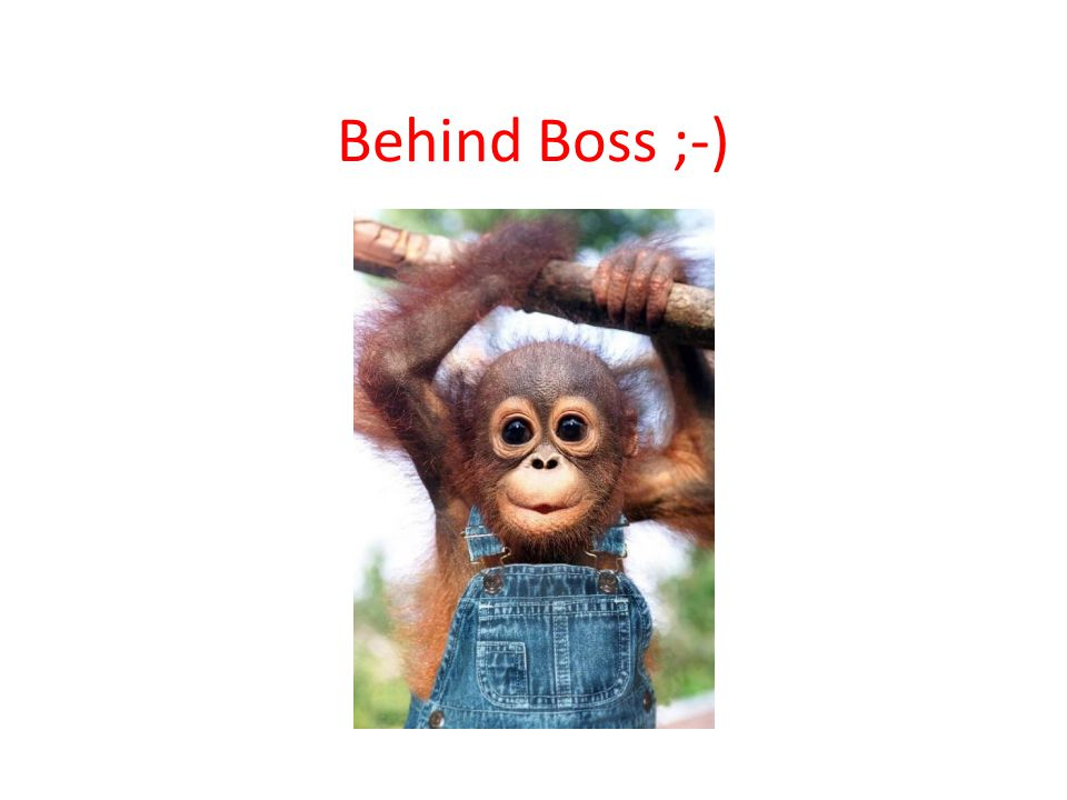Behind Boss ;-)