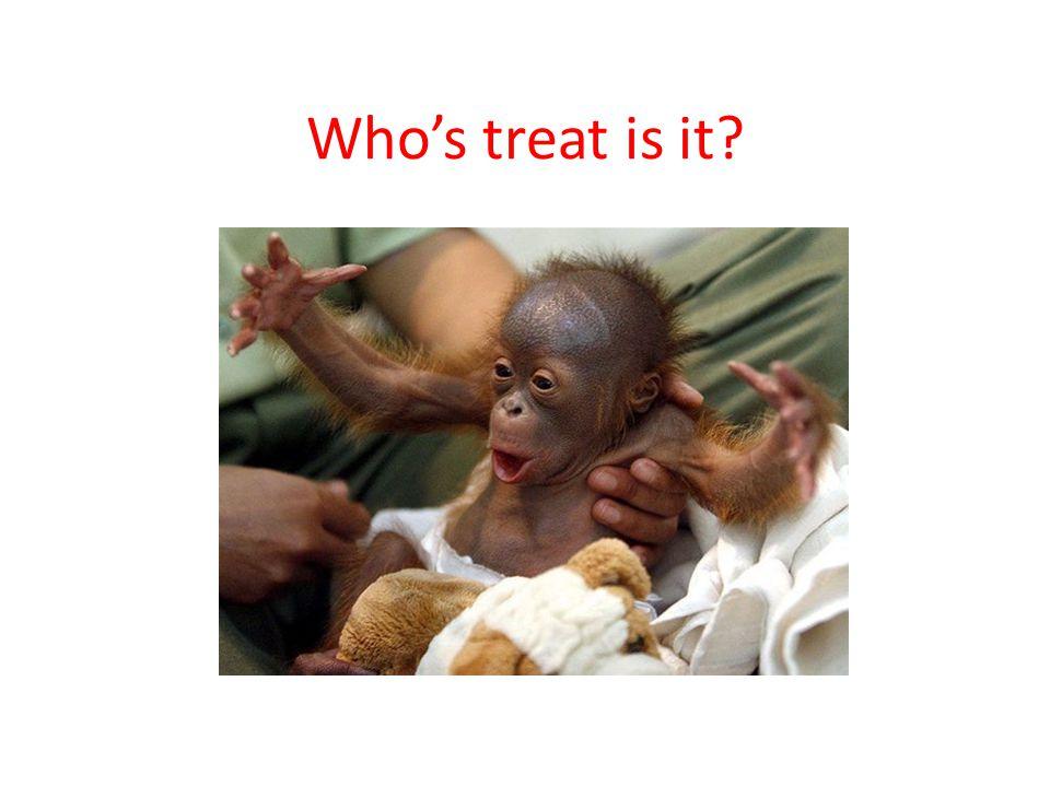 Who's treat is it