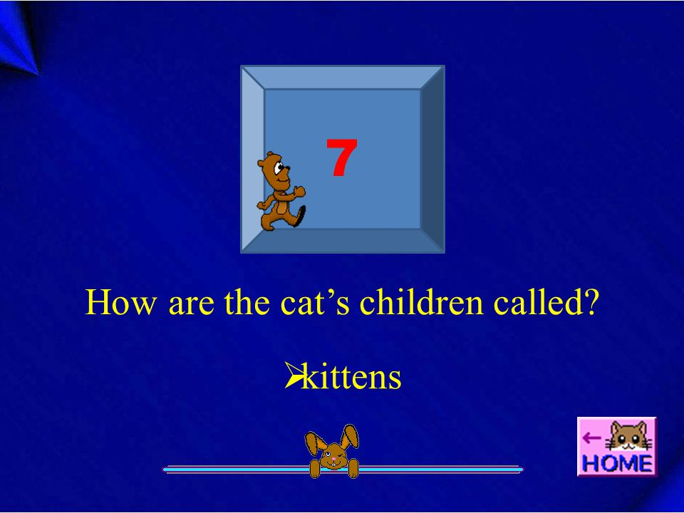 7 How are the cat's children called?  kittens