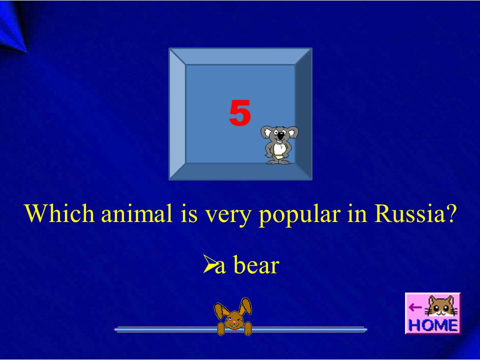 5 Which animal is very popular in Russia  a bear