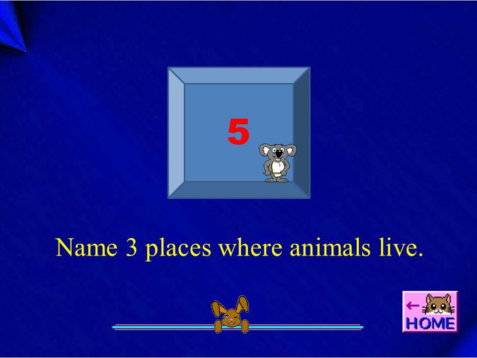 5 Name 3 places where animals live.